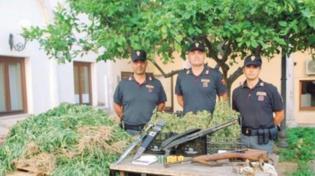 arresti castellammare, Trapani, Cronaca