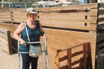 """A Selinunte il progetto per i disabili """"Tutti a mare"""""""