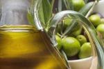 Consiglio dei ministri riconosce le organizzazioni di produttori olio