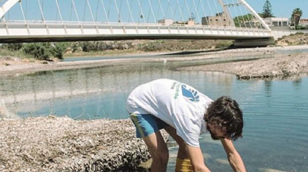 foce delia mazara, Trapani, Cronaca