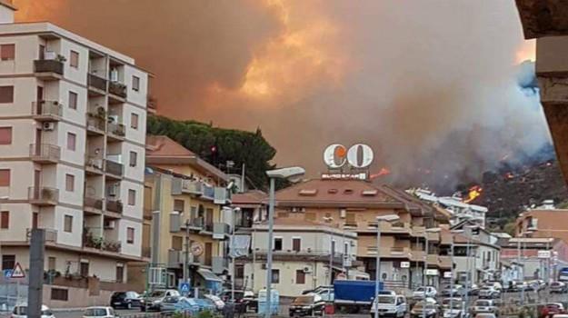 incendi in sicilia, riserva dello Zingaro, Sicilia, Cronaca