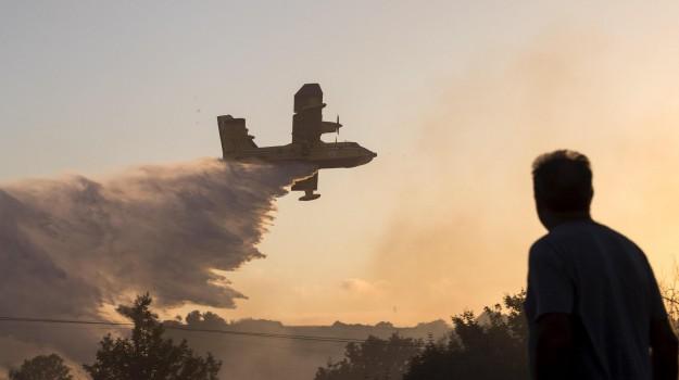 incendi in sicilia, protezione civile, Fabrizio Curcio, Sicilia, Cronaca