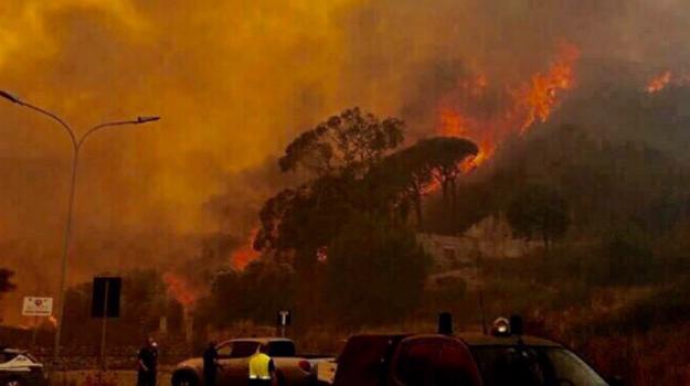 incendi in sicilia, Fiorello, Sicilia, Cronaca