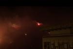 Incendi in Sicilia, Coldiretti: animali morti e aziende devastate