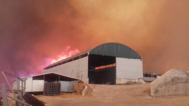 incendi danni, incendio chiaramonte gulfi, incendio patti, Sicilia, Cronaca