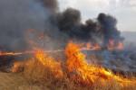 Ancora incendi in provincia di Palermo, a Ciminna i residenti aiutano i vigili del fuoco