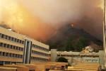 Messina, Coldiretti: in fumo 2 mila ettari. Fiorello: roghi come Roma con Nerone
