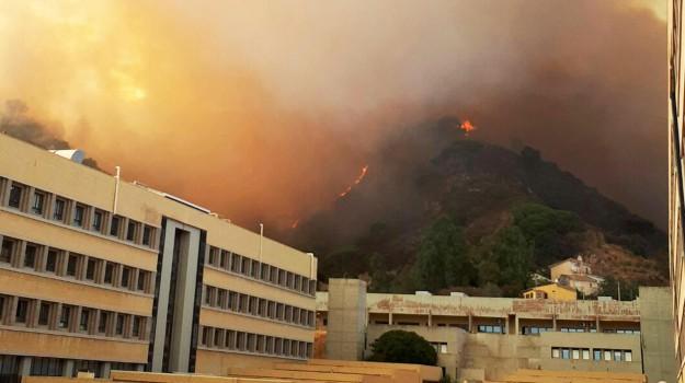 coldiretti, emergenza incendi messina, Fiorello, Francesco Ferreri, Messina, Cronaca
