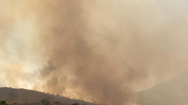 incendi, incendi in sicilia, zingaro in fiamme, Trapani, Archivio