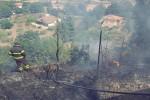 Le fiamme accerchiano la casa di un'anziana, donna salvata a Nicosia
