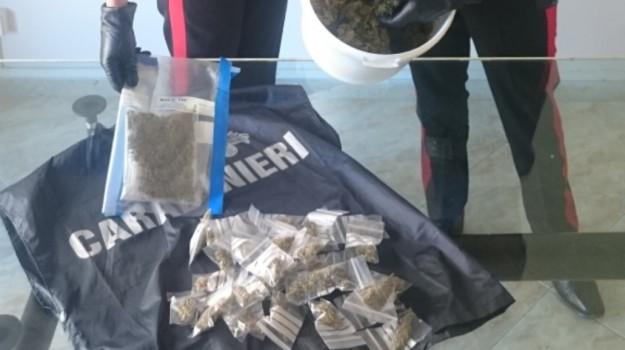 blitz anti droga palermo, marijuana, Palermo, Cronaca