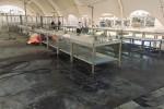 I commercianti chiedono a Messineo di riaprire il mercato ittico