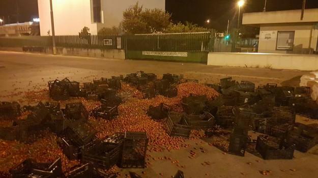 pomodoro ciliegino, protesta agricoltori vittoria, Ragusa, Cronaca