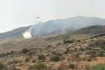 Le fiamme bruciano ancora la riserva dello Zingaro, evacuati alberghi e villette