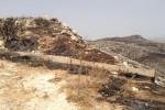Desolazione e cenere: ecco una parte dello Zingaro dopo gli incendi nelle foto dell'assessore Cracolici