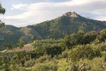 Scoperto il vino italiano più antico, ha quasi 6.000 anni