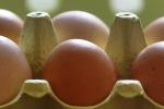 Due casi in Campania di uova contaminate