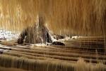 Nasce un pastificio nel carcere Ucciardone di Palermo