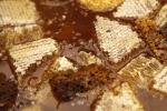 Miele è un 'arma' contro superbatteri antibiotico-resistenti