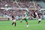 Torino-Sassuolo, sforbiciata volante: ecco il gol capolavoro di Belotti - Video