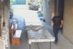 Omicidio a Palagonia, in un video il volto dell'assassino