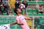 """Palermo, Nestorovski: """"Siamo pronti a riprendere la corsa"""""""