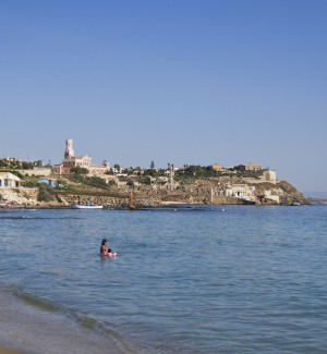 """In Sicilia un nuovo pesce """"alieno"""" mai visto nel Mediterraneo: la scoperta a Portopalo"""