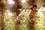 Coltivazione di cannabis scoperta a Messina, arrestato un 43enne
