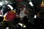 Terremoto a Ischia, le emozionanti immagini di Mattias estratto dalle macerie dopo 14 ore - Video