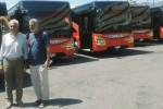 L'Atm si rifà il look a Messina, ecco sei nuovi bus