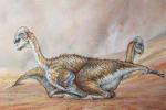 Trovato un 'nido' di dinosauri, dormivano come gli uccelli