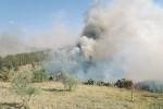 Brucia il bosco demaniale nella valle di Racalmuto