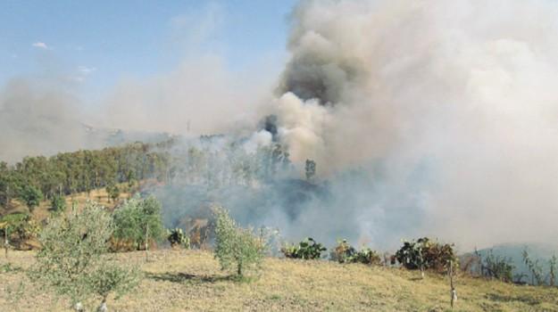 incendio racalmuto, Agrigento, Cronaca