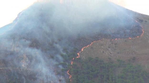 emergenza incendi sicilia, incendio monreale, Palermo, Cronaca