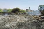 Gela, l'incendio doloso alle mura Timolontee