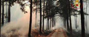 """Piazza Armerina, inferno di fuoco Malori tra gli abitanti: """"Un disastro"""""""