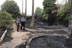 Incendio alla villa comunale di Floridia: secondo arresto