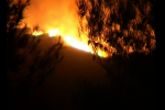 Incendi, 26 richieste di intervento aereo in tutta Italia: 3 dalla Sicilia