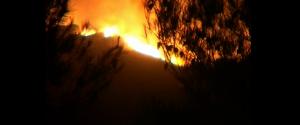 Nuovi roghi nel Palermitano, fiamme a Cefalù e Montagna Longa