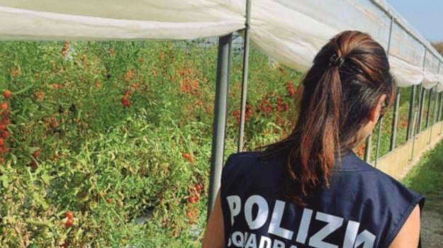 Omicidio a Licata, Agrigento, Cronaca