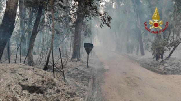 Inferno a Piazza Armerina, le immagini della riserva divorata dalle fiamme