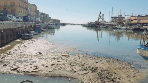 dragaggio porto mazara, Trapani, Cronaca