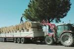 Allevatori mobilitati dopo l'incendio a Chiaramonte: arrivate le prime rotoballe