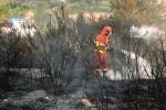 Dopo l'incendio torna in sicurezza la strada provinciale 51