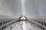11/9 a New York finisce con momenti luce