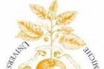 Scienze Gastronomiche diventa facoltà, cerimonia il 20/11 con Gentiloni