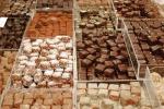 Cioccoshow Bologna torna e trasloca