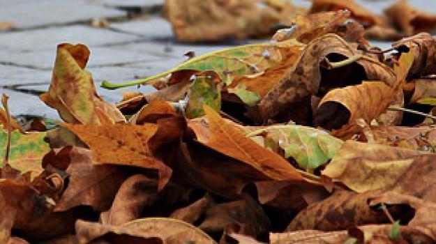 22 settembre equinozio, autunno equinozio, Sicilia, Società