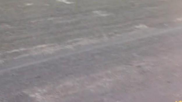 Strisce pedonali sbiadite a Palermo, la segnalazione da via Crispi