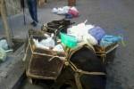 Asinello impiegato per la raccolta dei rifiuti cade: polemiche a Castelbuono
